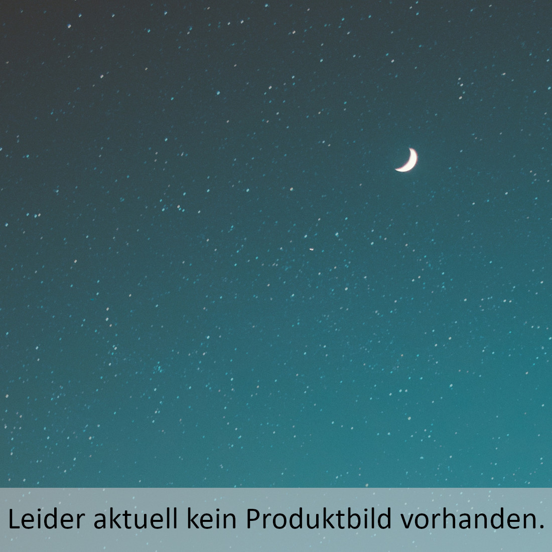 Luther Playmobil-Figur